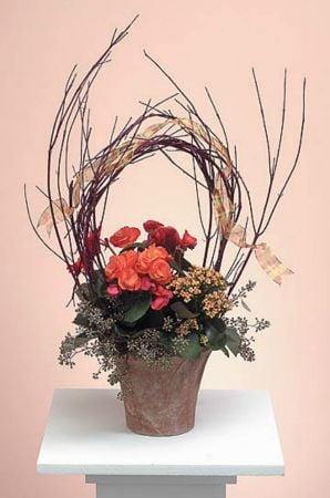 Plants-2 Funeral Plants