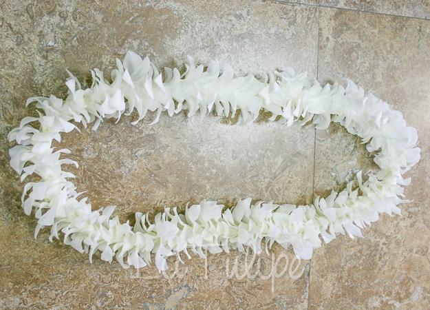 hawaiian-leis-2 Hawaiian Leis