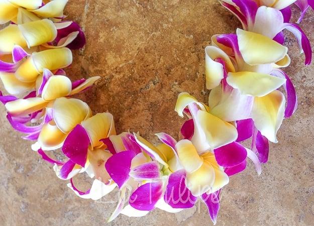 hawaiian-leis-5 Hawaiian Leis