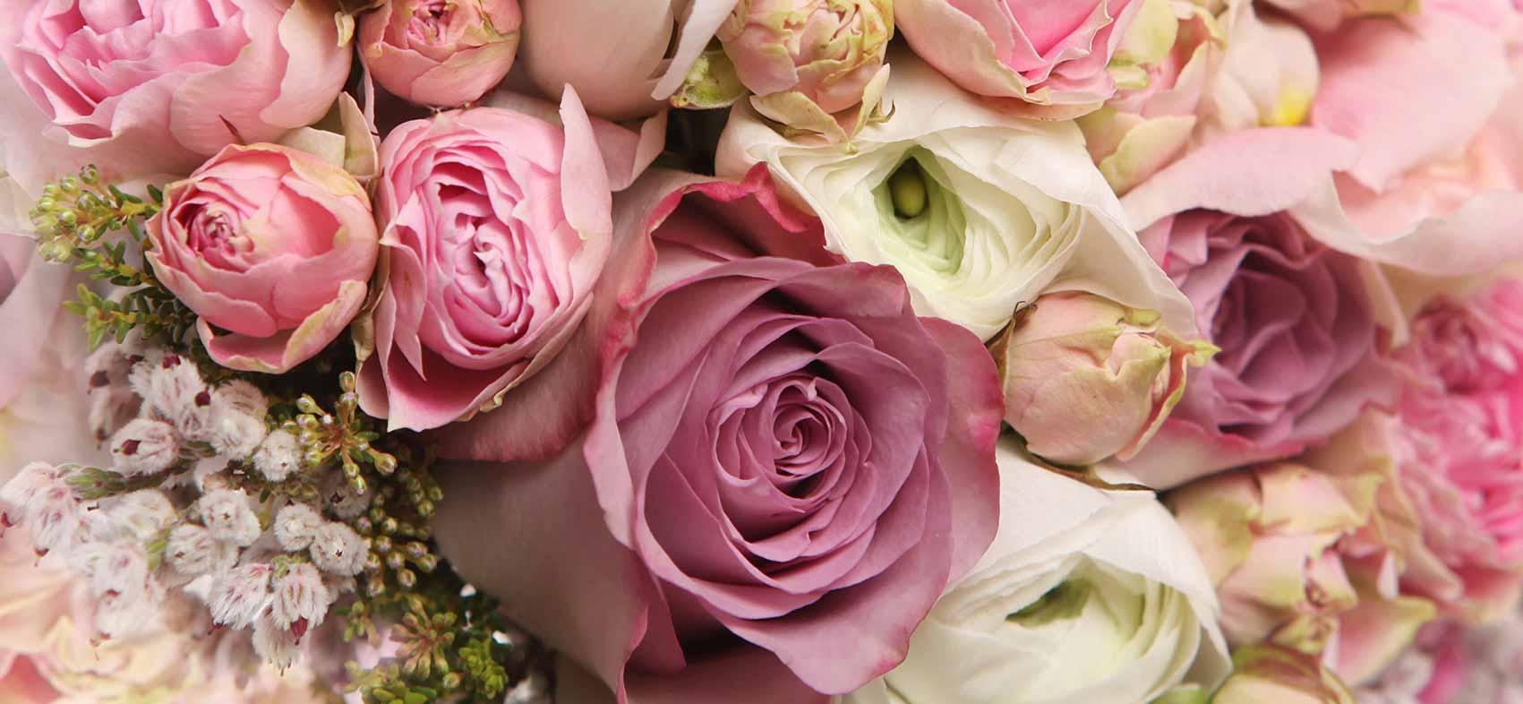 pink roses bouquet dozens