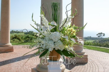 Mike and Rob's Pelican Hill Resort Wedding