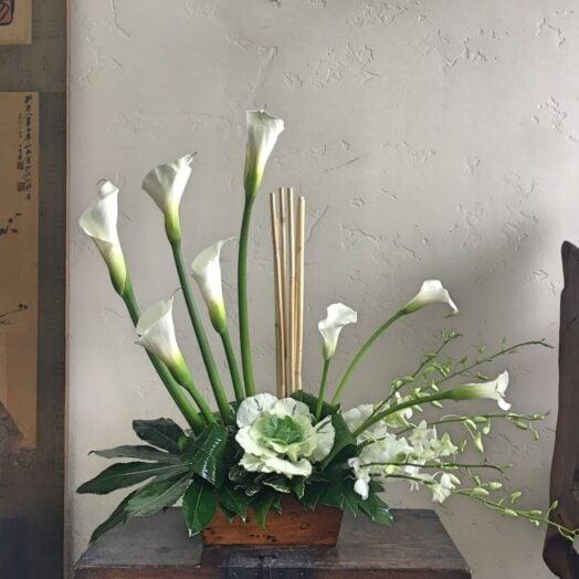 calla lilies in a vase