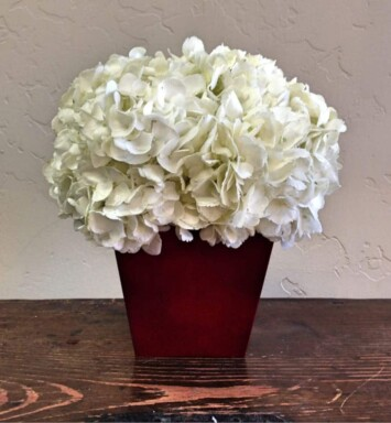 round ball of white hydrangeas