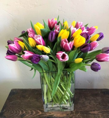 six dozen tulips in a vase