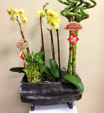 bamboo and orchids in planter