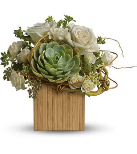 roses and succulents in vase