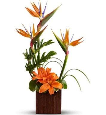 birds of paradise and orange Asiatic lilies