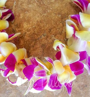 Plumeria Hawaiian Lei