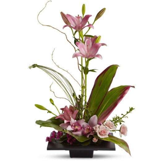 pink orchids on a flat square