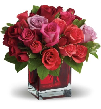 red roses in a small vase