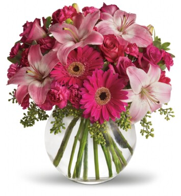 hot pink gerberas and miniature carnations