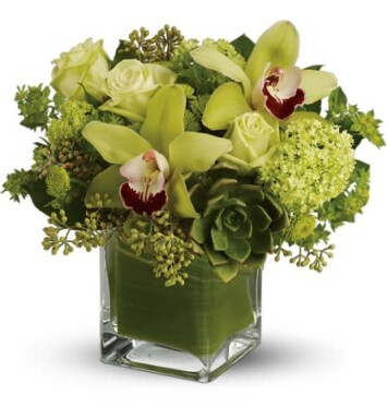cymbidium orchid in a vase