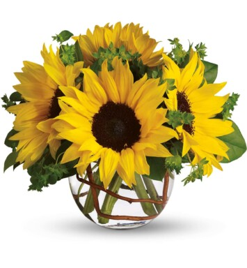 sunflowers in round vase