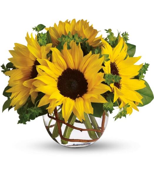 sunflowers in round vase