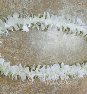 White dendrobium orchid lei