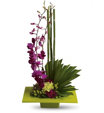 tropical orchid in square vase