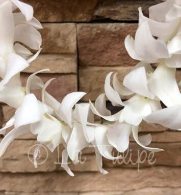 White dendrobium orchid hawaiian lei