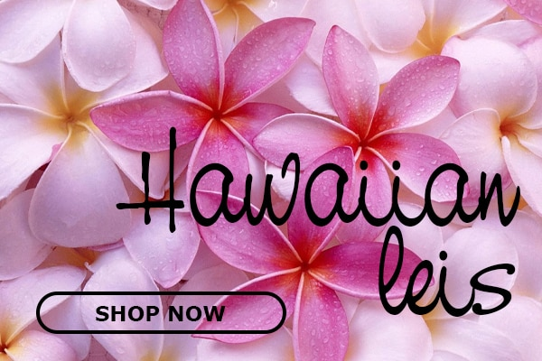 hawaiian lei mobile slider