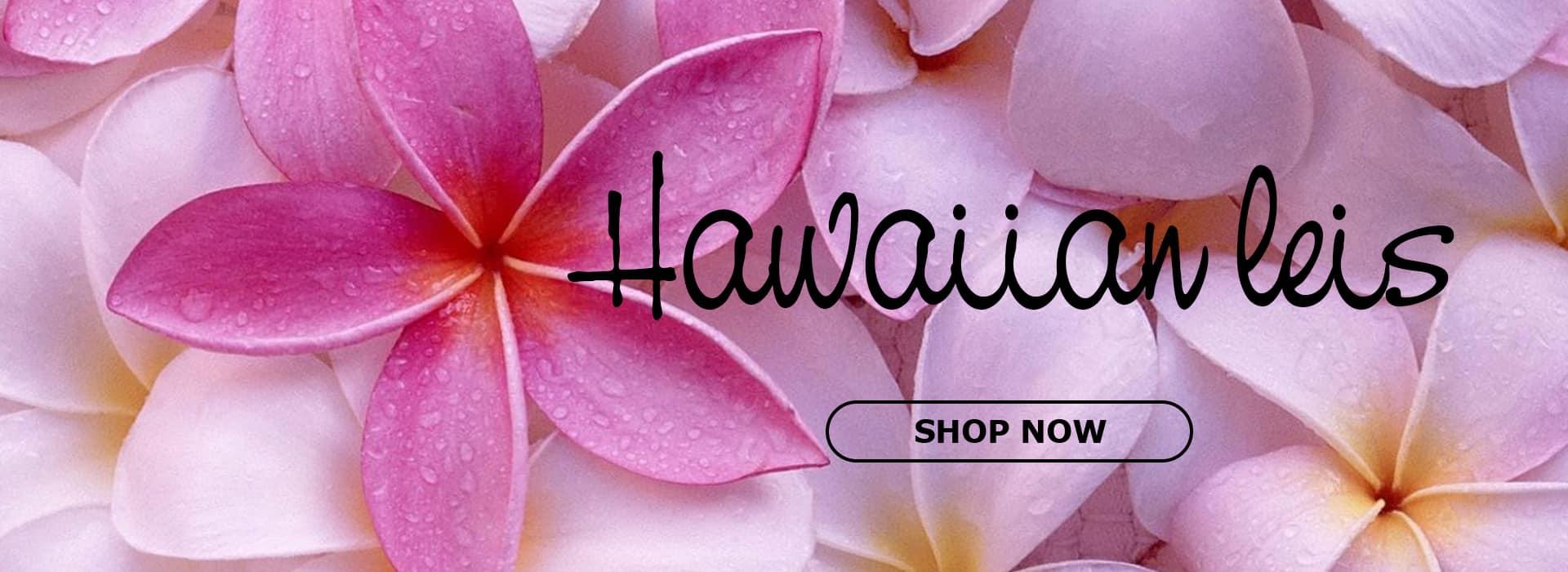 hawaiian leis slide