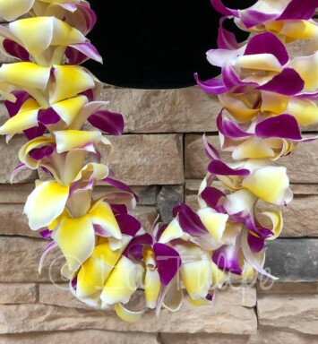 Double Bombay Purple Orchid & Yellow Plumeria Hawaiian Lei