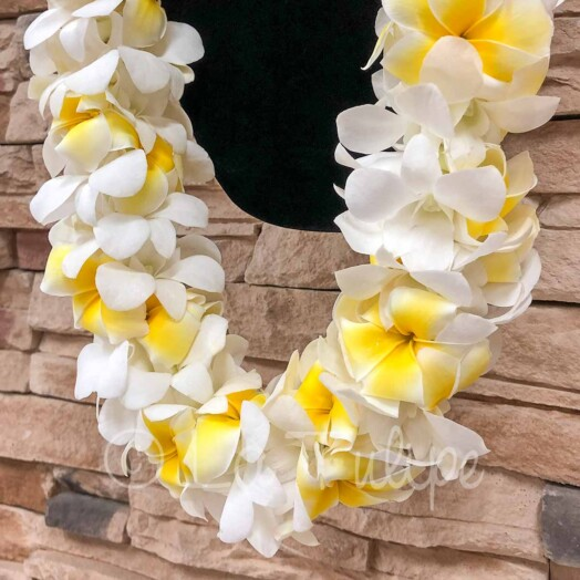 Triple yellow plumeria and white dendrobium orchids